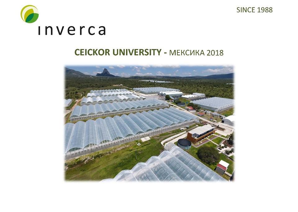 Inverca_37